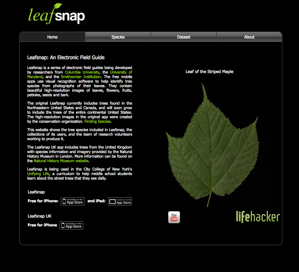 33 Outdoor Apps to Get Kids into Nature Leafsnap