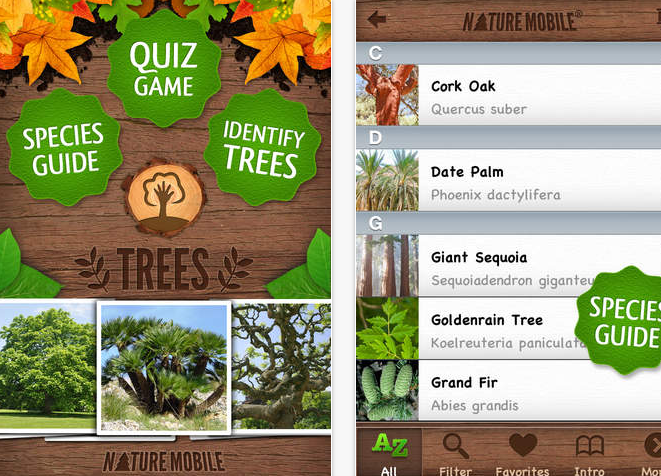 33 Outdoor Apps to Get Kids into Nature Trees Pro HD