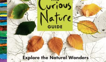 15 of the Best Nature Books for Kids