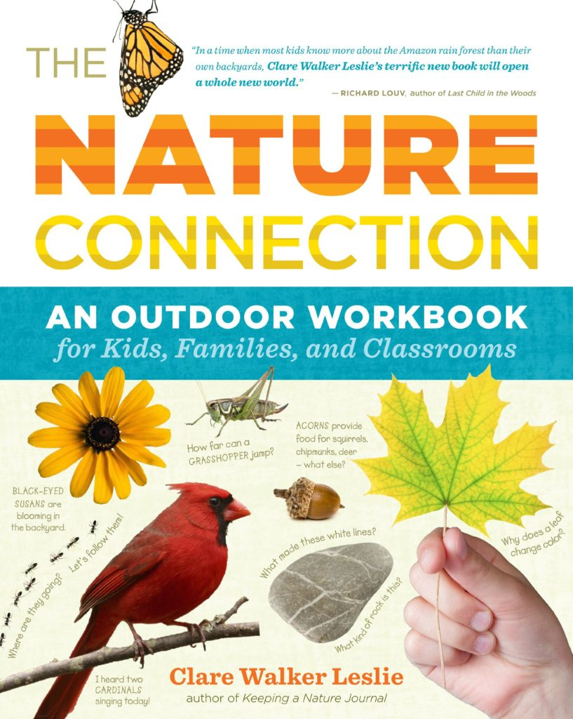 The Nature Connection: An Outdoor Workbook for Kids, Families, and Classrooms Paperback by Clare Walker Leslie Nature Books for Kids