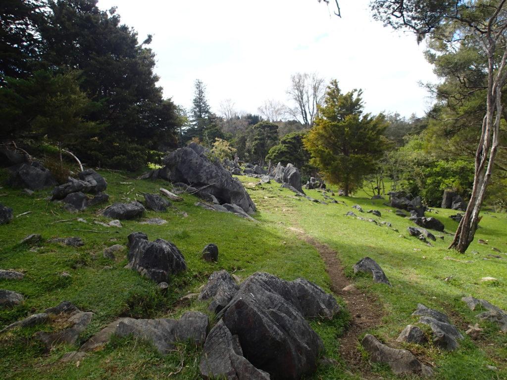 Te Araroa Trail - New Zealand Top Backpacking Trips